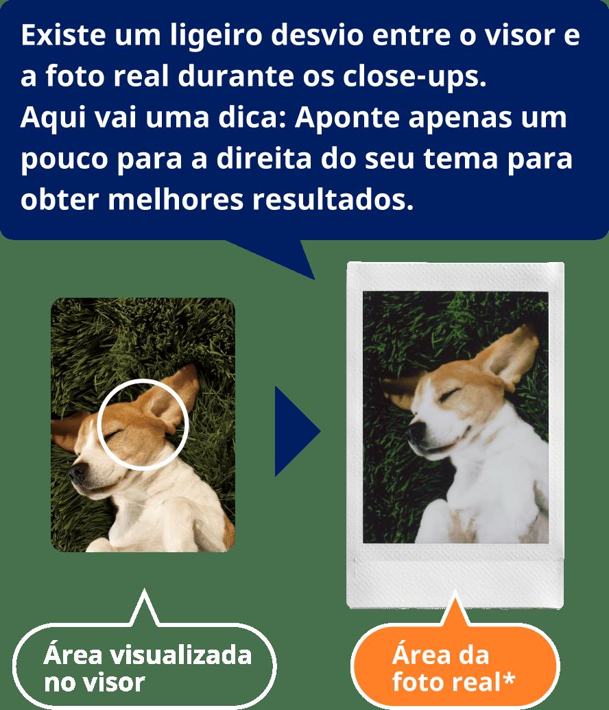 Existe um ligeiro desvio entre o visor e a foto real durante os close-ups.Aqui vai uma dica: Aponte apenas um pouco para a direita do seu tema para obter melhores resultados.