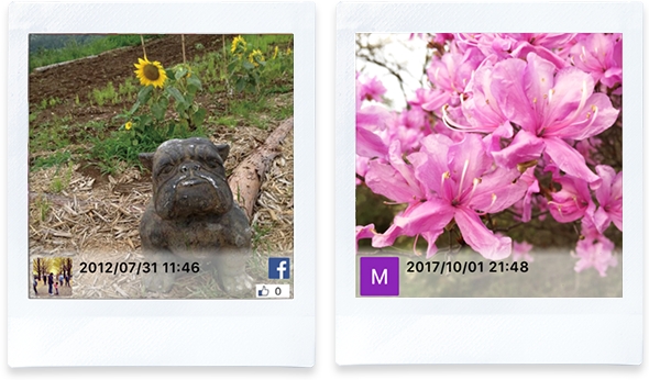 Template For Printing Images That Were Uploaded To A Social Networking Service Sns